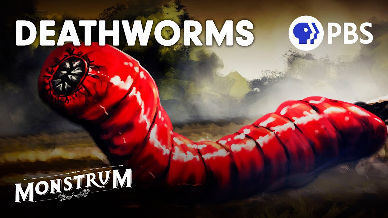 Download Death Worms: Fact or Fiction? | Monstrum