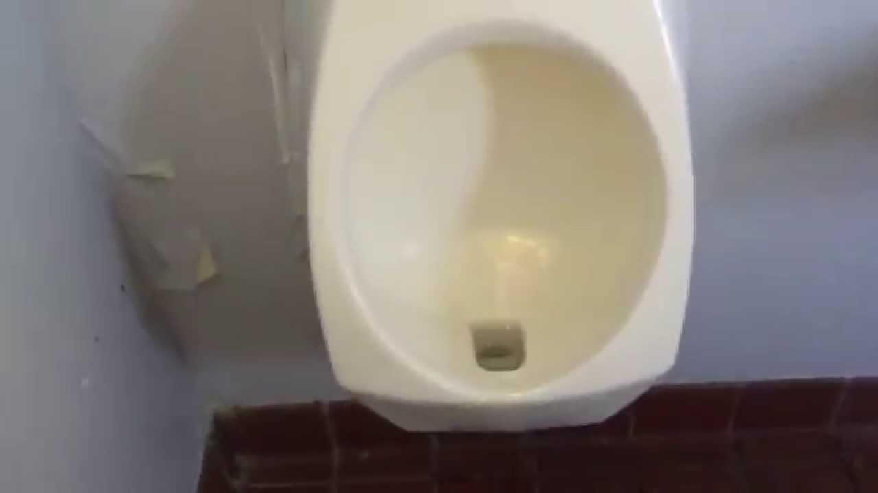141 a gerber aquasaver toilet and a kohler kingston for Gerbiere toit