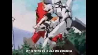 NEON GENESIS EVANGELION  ( 1995 )