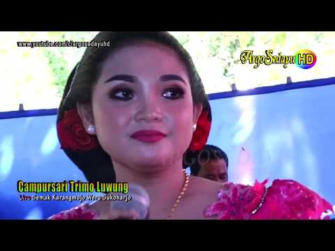 Langgam SETYO TUHU HD Video CAMPURSARI TRIMO LUWUNG