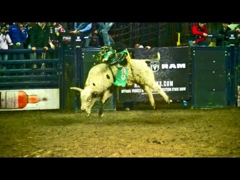 Bull Ride Competition, National Western Stock Show, Denver, 1/15/13 Travel Video