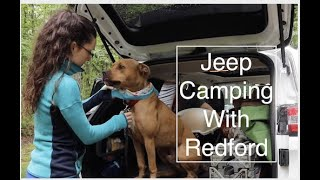 Jeep Camping With Our Dog At Cheesequake State Park NJ- pwfin