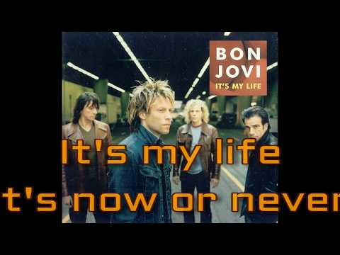 It´s My Life - Bon Jovi// Folk Cover By Daniel Ara