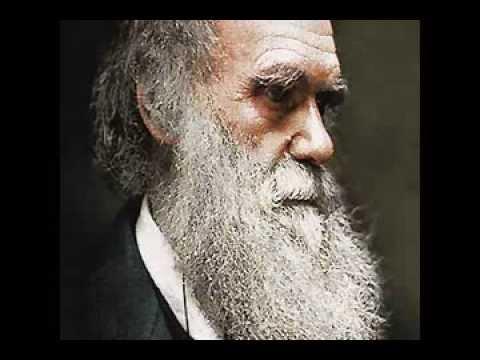 Darwin's Recantation and Conversion