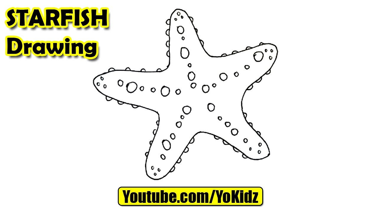 Uncategorized Star Fish Drawing how to draw a starfish for kids youtube kids