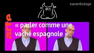 """le mot : """"parler comme une vache espagnole"""" - ARTE"""