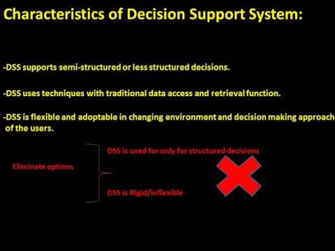 CISA Exam-Last Minute Revision- Decision Support System (Domain- 3)