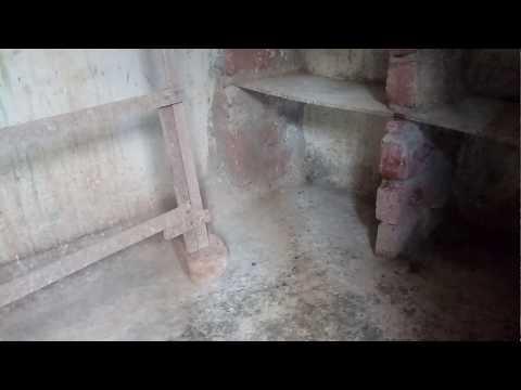 Kabutar ki LOFT (DARBA) rahe BIMARIYON se door by irfan khan