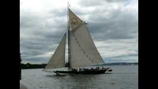 Dutch Sailboats at Governors Island