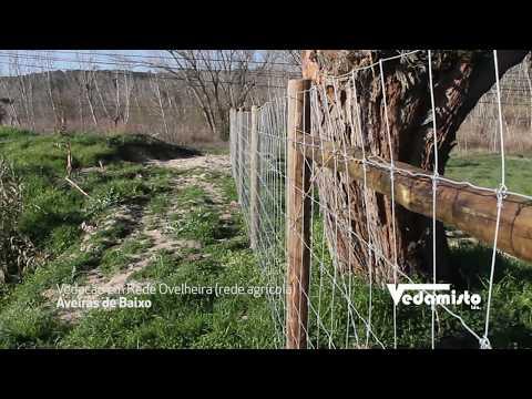 Vedamisto - Vedação em rede agricola (ovelheira) em Aveiras de Baixo 2019