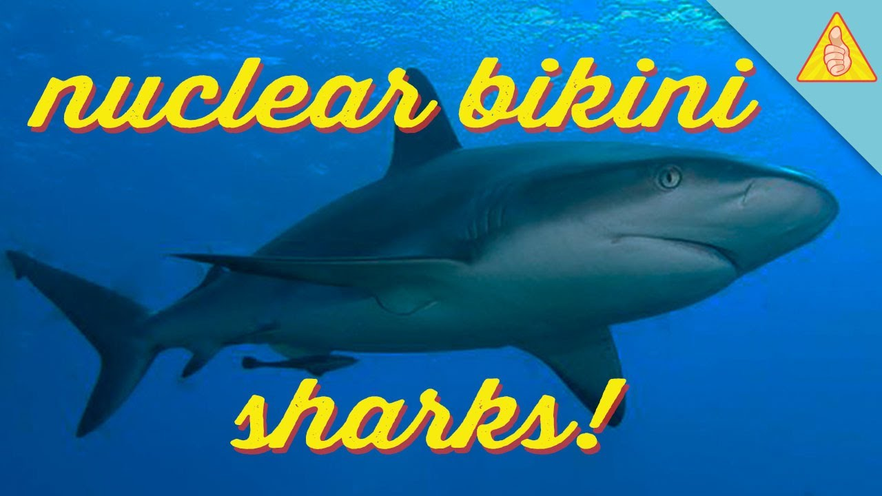 Apologise, but, nuclear testing bikini shark mutate