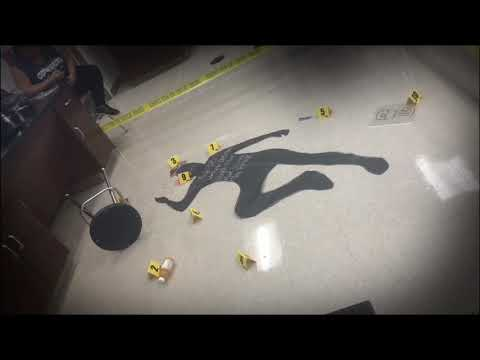 The Forensic Science Project