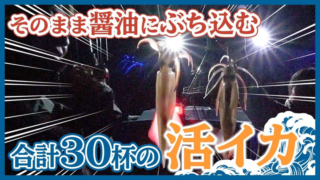 【イカメタル】五島列島の夜遊び!イカメタルでケンサキイカ祭り / アオリイカとはまた違う最高の刺し身をスタッフとおいしくいただきました!