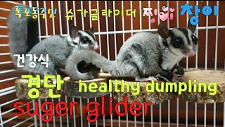 [kobo jeong] 슈가글라이더 건강 경단 만들었습…