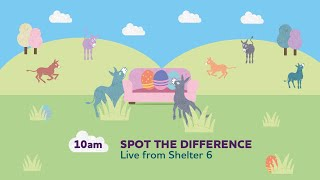 Spot the difference (Live) | Sanctuary From Your Sofa