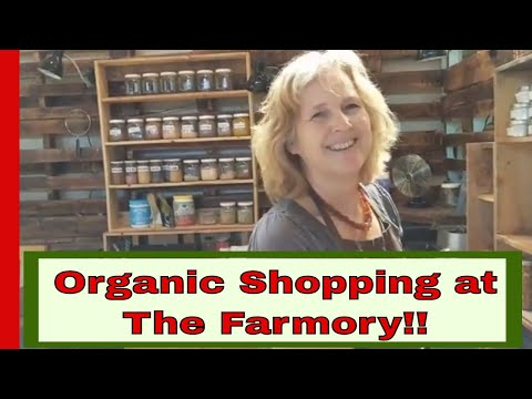 Shopping at The Farmory, a year round organic farmers market for the first day of VEDA vlogs!
