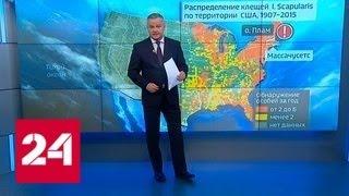 Смотреть видео Пентагон подозревают в массовом заражении американцев болезнью Лайма - Россия 24 онлайн