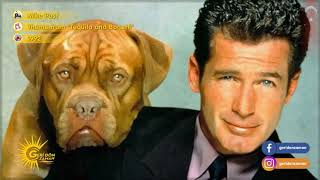 Tequila & bonetti (1992) opening themejack scalia - charles rocket mariska hargitay dog