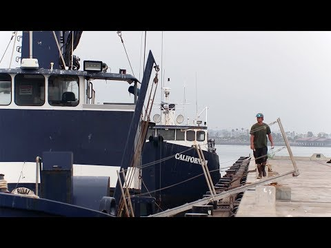 What Is The California Commercial Fishing Apprenticeship Program?