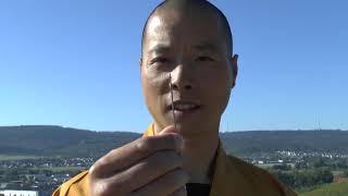 Upps! Shaolin Mönch wirft Nadel durch Glasscheibe!