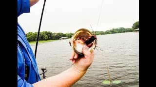 Frog Fishing on Lake Athens, Texas