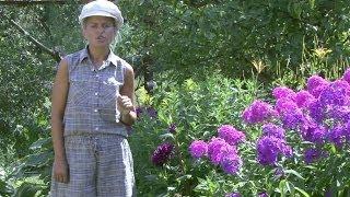 Дизайн цветников. Уход за цветниками.Часть 9(Цветник -- это особый элемент декора садового участка, это совокупность цветов, собранных вместе на одном..., 2014-05-17T13:08:34.000Z)