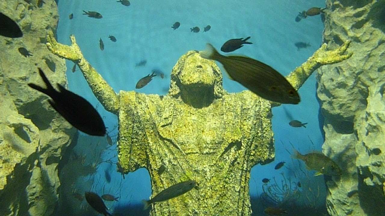 Malta National Aquarium - YouTube