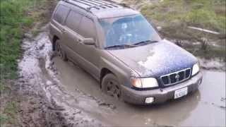 Subaru stuck in mud застряла в грязи.