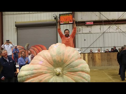 A.J. - Connecticut Man Grows A Very LARGE Pumpkin!