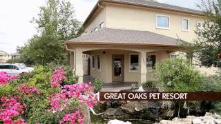 Great Oaks Animal Hospital and Pet Resort