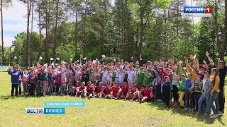 """Спортивный праздник в оздоровительном лагере """"Синезёрки"""""""