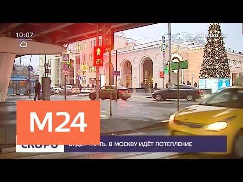 В Москве ожидается резкое потепление - Москва 24