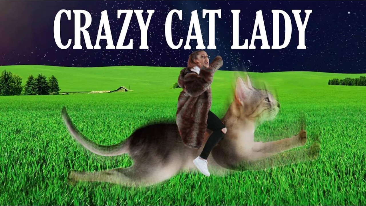 Crazy cat lady youtube