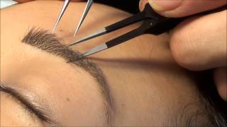Video StudioLASH® Eyebrow Extensions & Eyebrow Henna download MP3, 3GP, MP4, WEBM, AVI, FLV November 2017