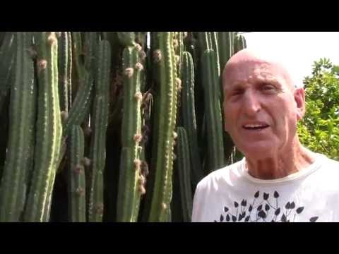 Fruit and Fig Farm Tour