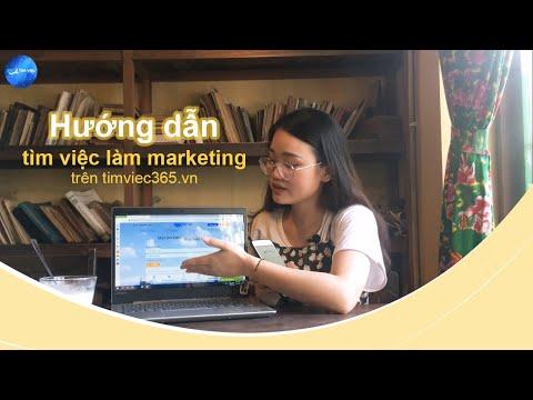 Hướng dẫn tìm việc làm marketing trên timviec365.vn - nhanh chóng và hiệu quả
