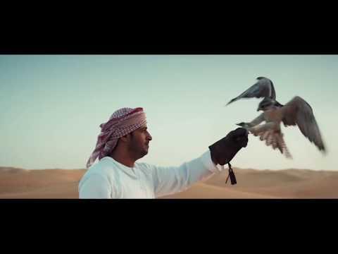 Dubai City Company - Business and Career Marketing in UAE