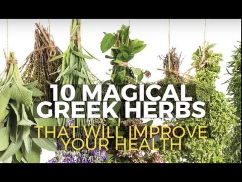 10 Greek Herbs to Improve Your Health