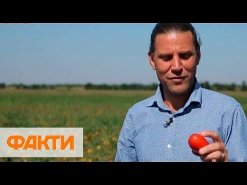 Иностранцы в Украине: