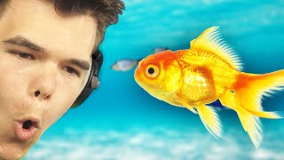 THE FISH PROP! (GMod Funny Moments)