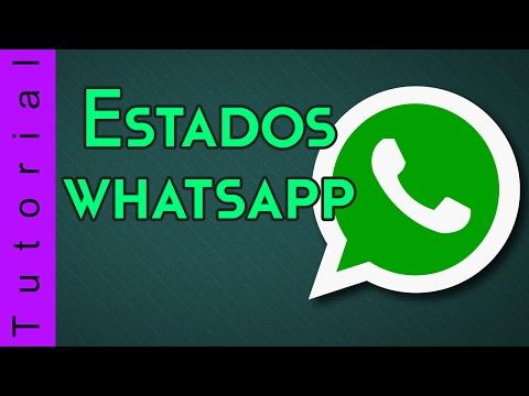 Activar estados en whatsapp (Status)