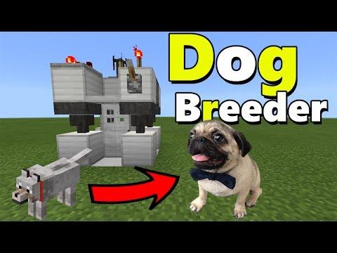 DOG BREEDER MACHINE TUTORIAL   Minecraft PE (Pocket Edition) The Pug Addon