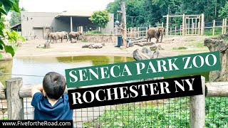 Tour of the Seneca Park Zoo in Rochester, New York