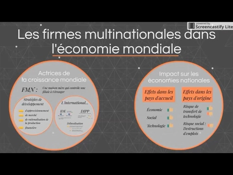 dissertation les firmes multinationales
