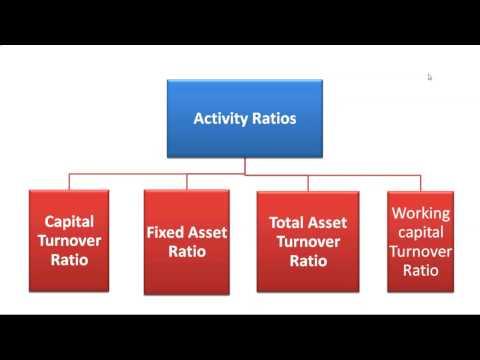 10. Interest Coverage Ratio
