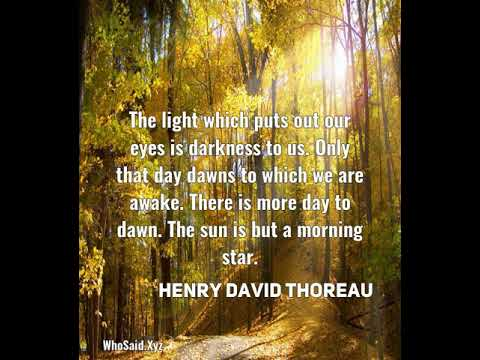 Henry David Thoreau: The light which puts out our eyes is darkness to us. On......