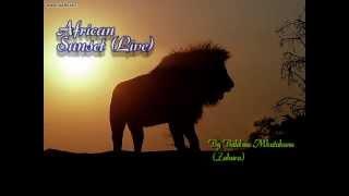 Zahara: African Sunset (Live)