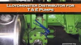 G Force Diesel Service Ltd - (306)825-2875