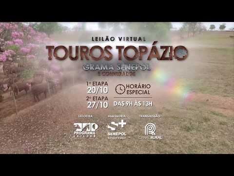 Leilão Topázio 20 e 27 out19