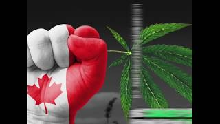 WASHINGTON S BIGGEST WEED PRODUCER BEGINS TRADING ON A CANADIAN STOCK EXCHANGE